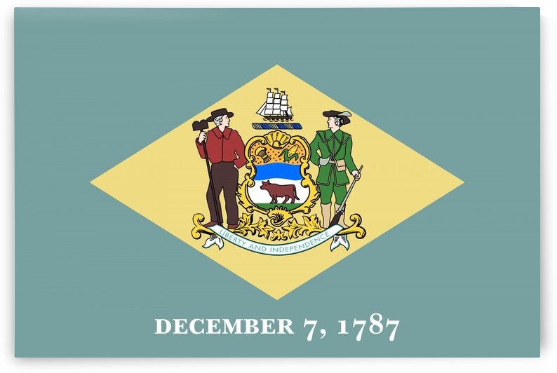 Delaware State Flag by Fun With Flags