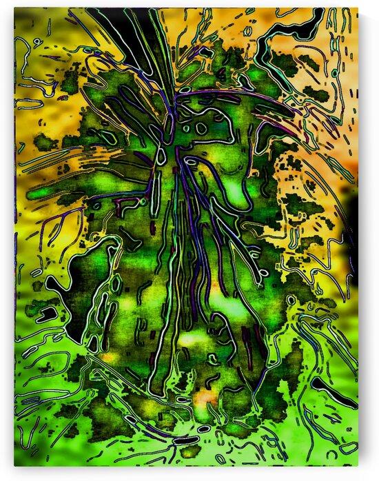 Falldari by Helmut Licht
