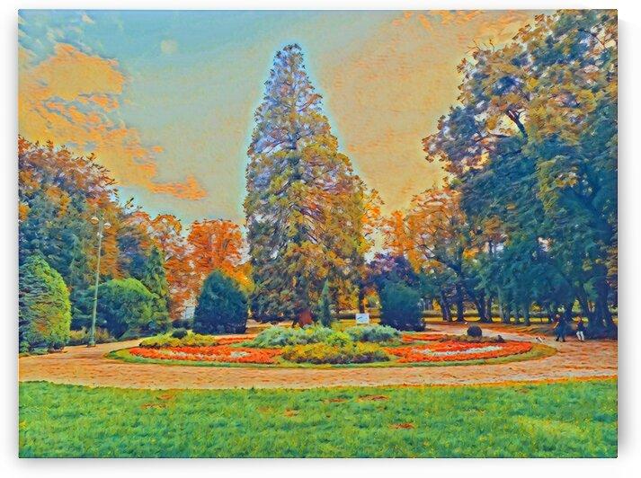Garden Color by Ferenc Lengyel