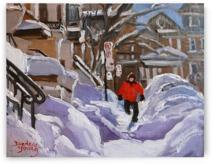 Montreal Winter, Snow Hurdles by Darlene Young