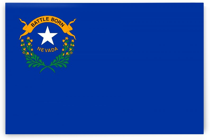 Nevada State Flag by Fun With Flags