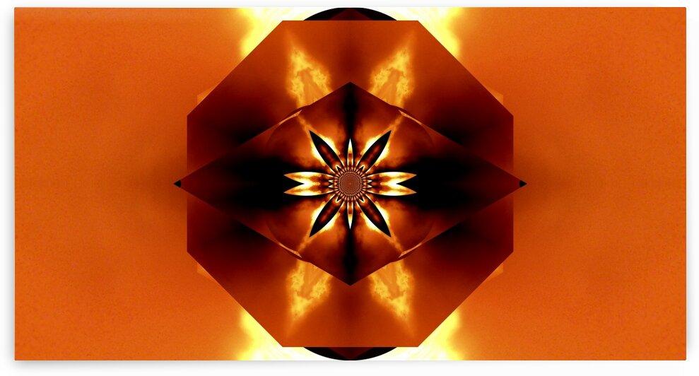 Orange Fire Flower 3 by Sherrie Larch