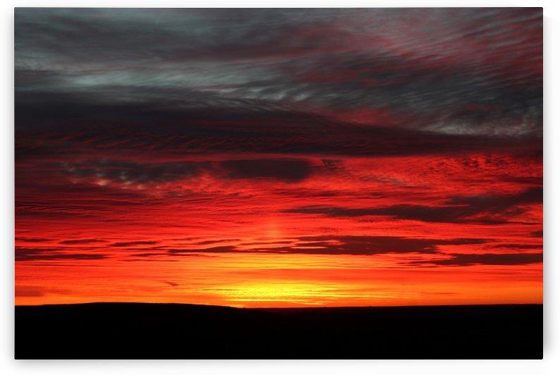 Prairie Morning by Jody Majko