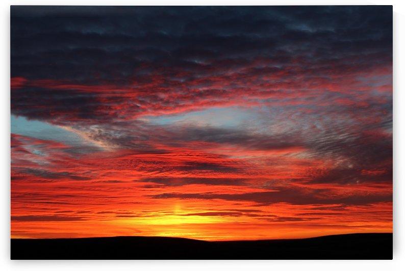 Saskatchewan Sunrise by Jody Majko
