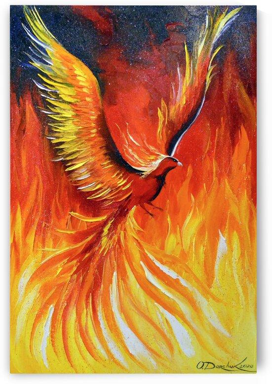Phoenix bird  by Olha Darchuk