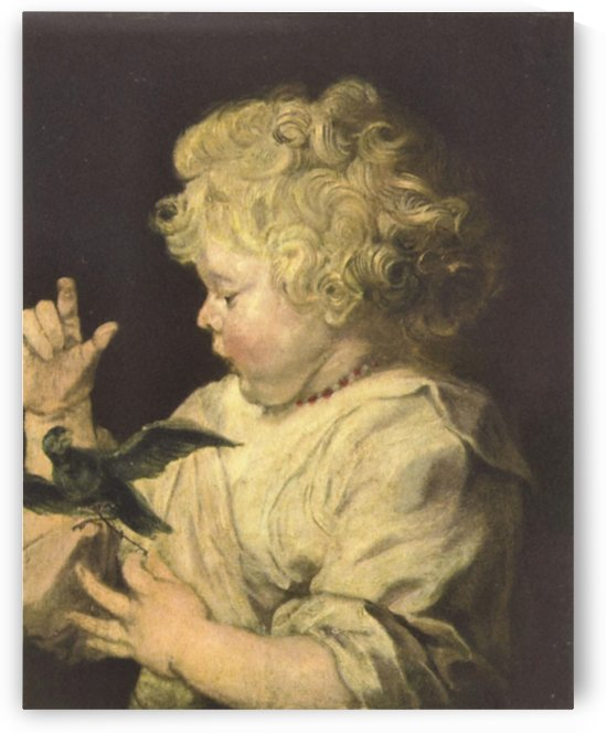 Portrait of a child with bird by Van Dyck by Van Dyck