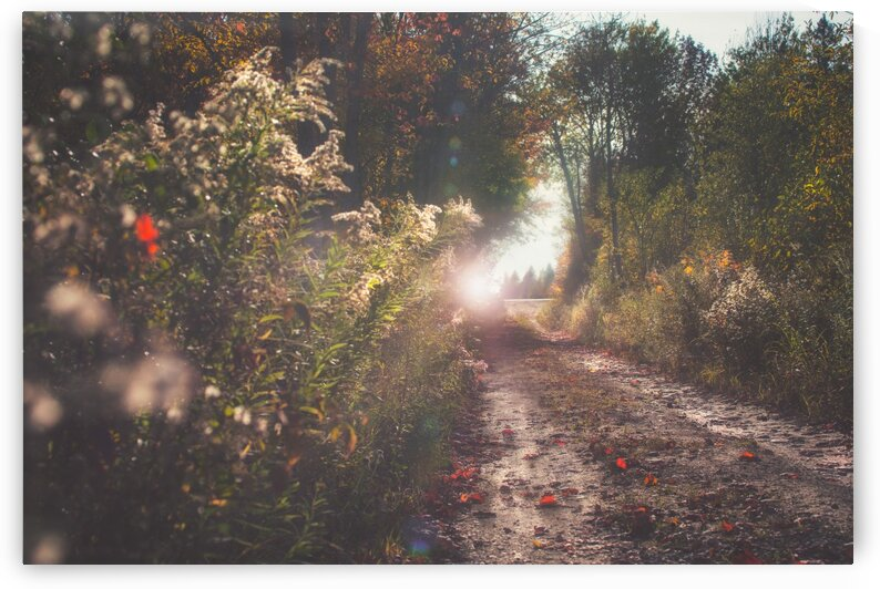 The End of Autumn by Chris Couling