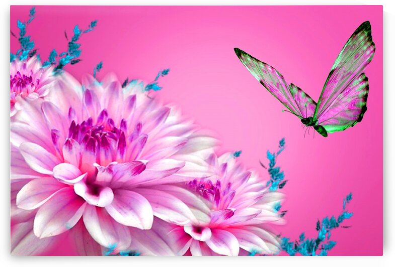 Beautiful butterfly and flowers  by Nature Art