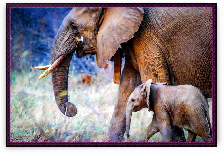 elephants mother and baby by Nature Art