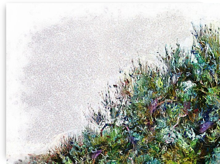 Cascading Olive Tree by Dorothy Berry-Lound