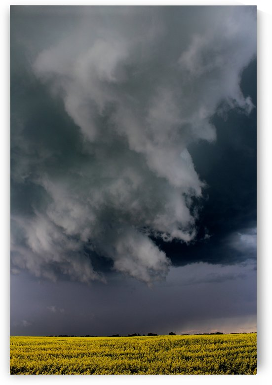 Turbulent Skies by Jody Majko