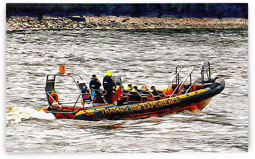 Tourist RIB Experience River Thames 1 by Dorothy Berry-Lound