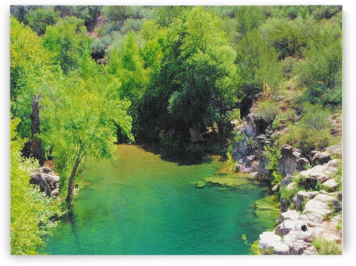 Pond by Arizona Photos by Jym