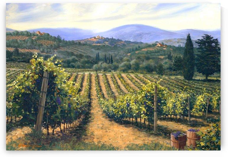 Chianti Vines by SwansonArt