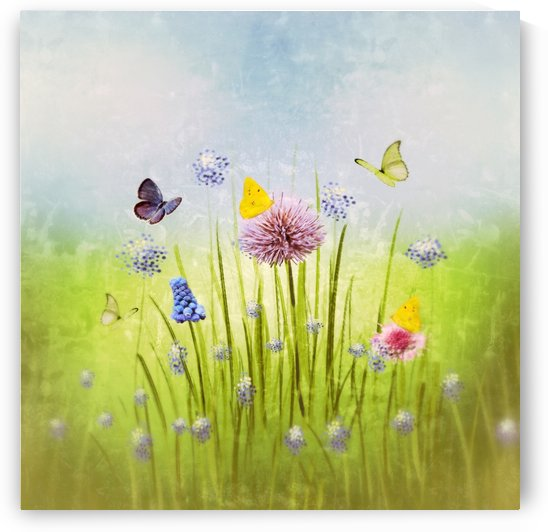 Spring meadow by Dagmar Marina