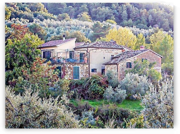 Italian Farmhouse in Autumn by Dorothy Berry-Lound
