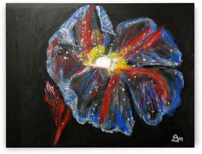 Flower Power by Paula Jane Marie