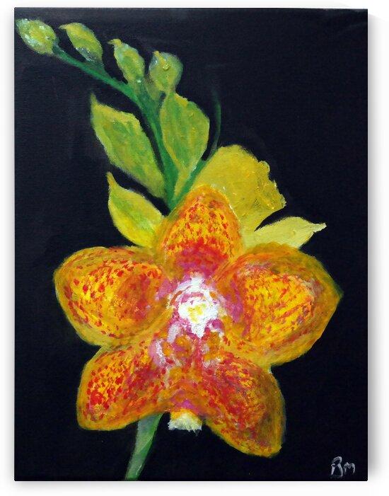 Flower Friday by Paula Jane Marie
