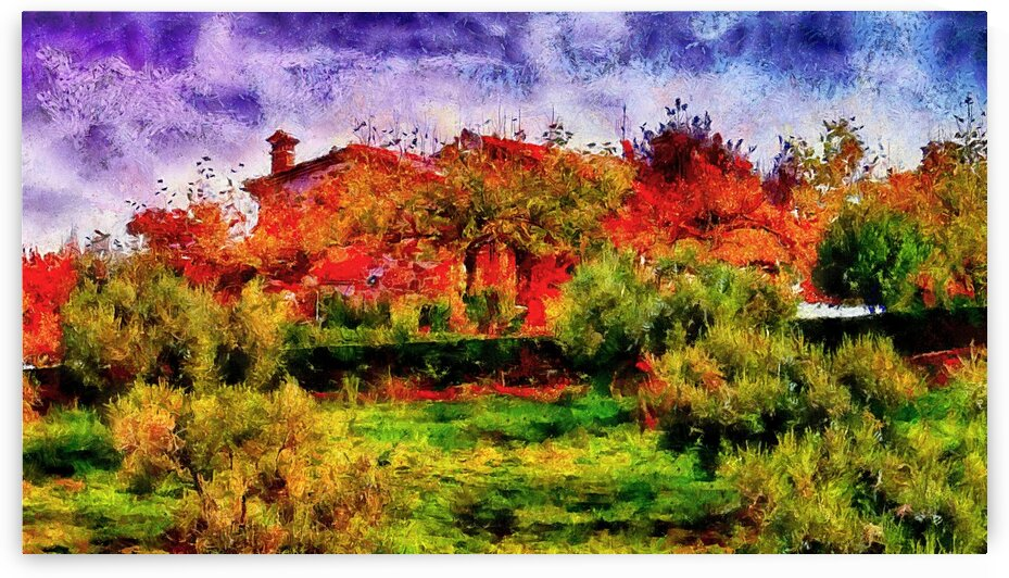 Sunset Autumn Color In Umbria by Dorothy Berry-Lound