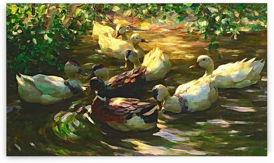 Ducks In a Pond_OSG by One Simple Gallery