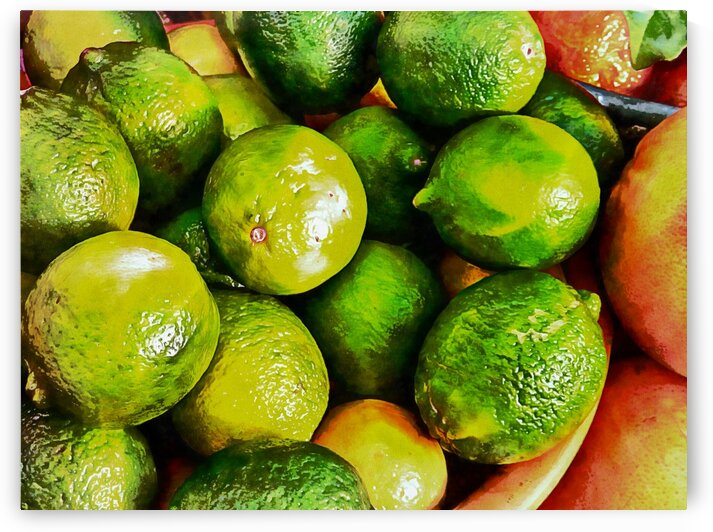 A Study in Limes by Dorothy Berry-Lound