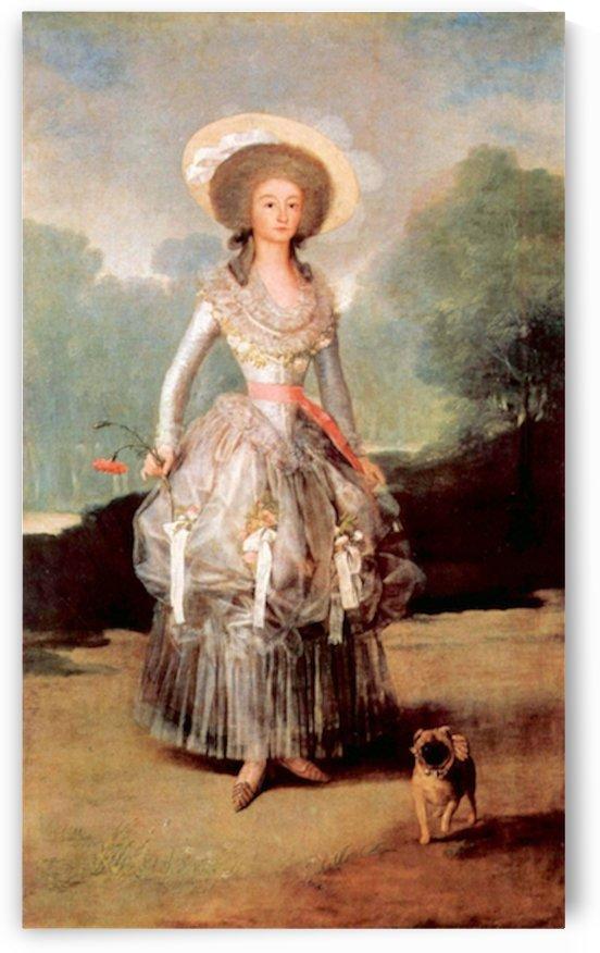 Portrait of Marquesa de Pontejos y Sandoval, Herzogin von Pontejos by Goya by Goya