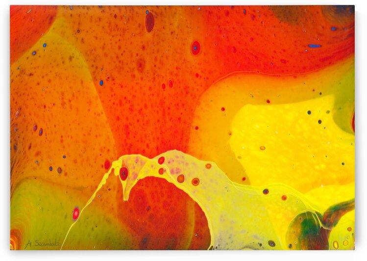 Mango by Anita Szombati by Anita Szombati