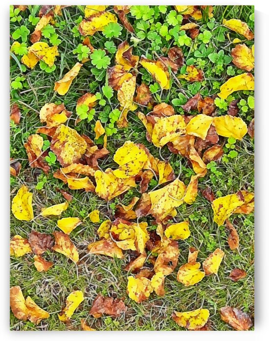 Fall Leaf Party by Dorothy Berry-Lound