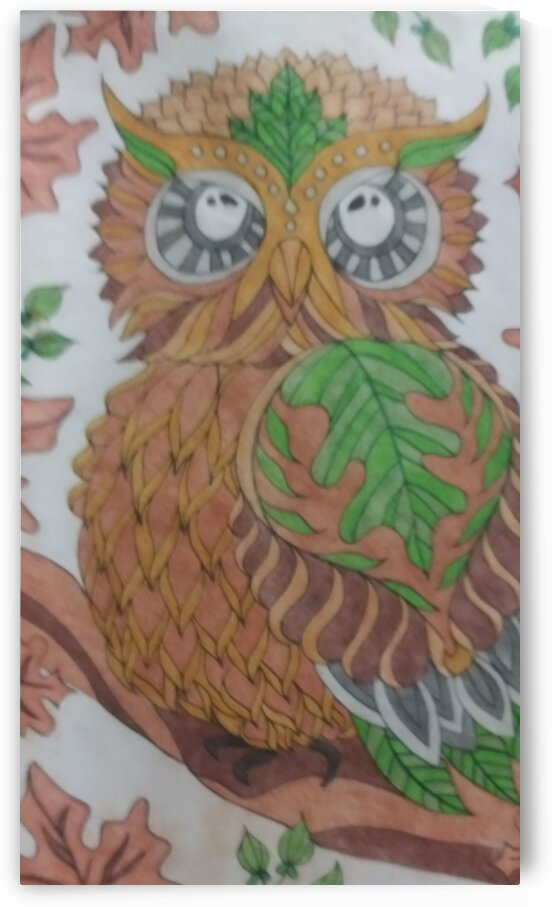 Owls by  SelfColored Coloring sheets