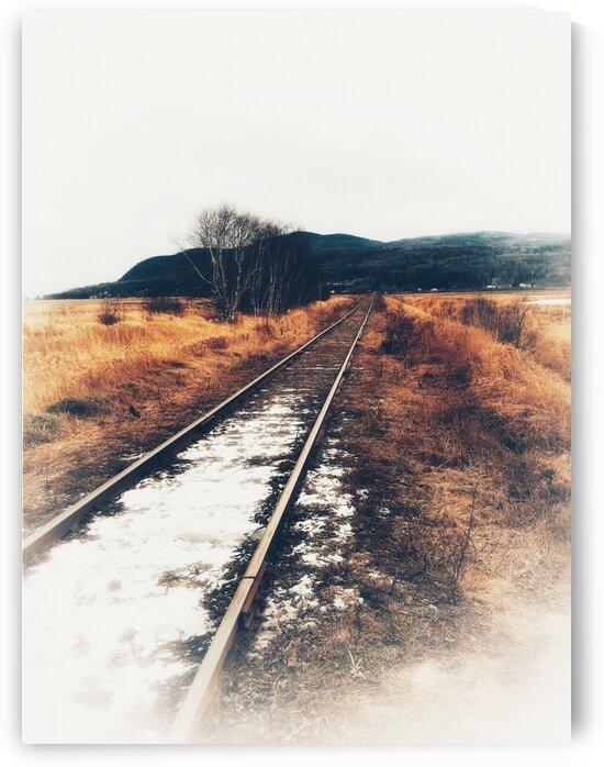 Rails by Guylaine Charest Artiste Photographe