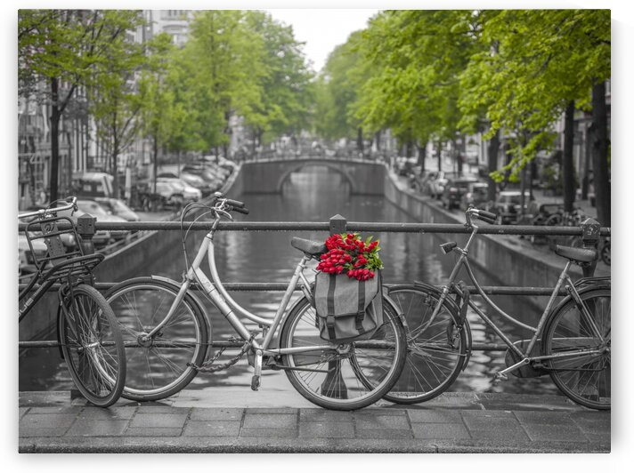 Bicycle with bunch of flowers by the canal, Amsterdam by Assaf Frank