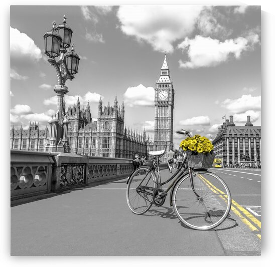 Bicycle with bunch of flowers on Westminster Bridge, London, UK by Assaf Frank