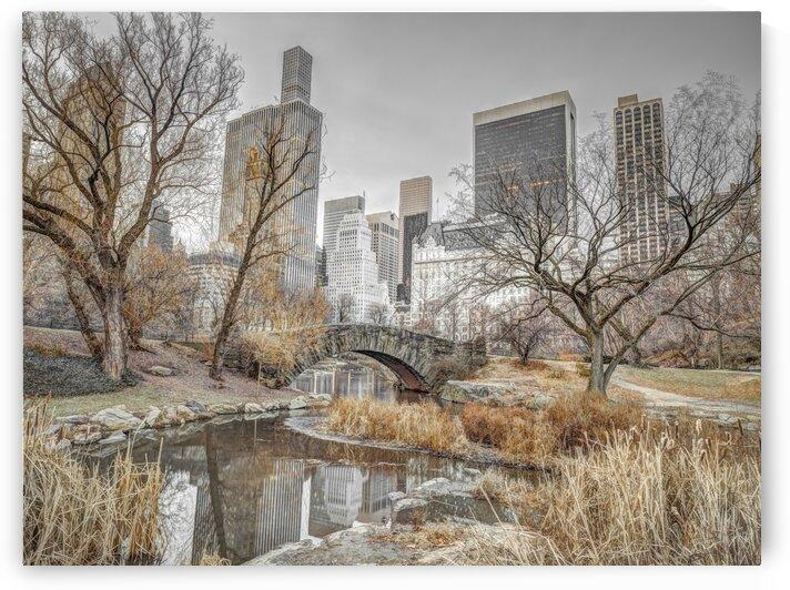 Central park with Manhattan skyline, New York by Assaf Frank