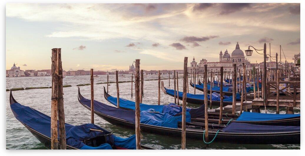 VENICE Gondolas & Santa Maria della Salute   Panorama by Melanie Viola