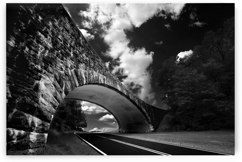 Under The Blue Ridge Parkway by Mark Daniels
