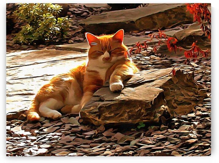 Ginger Cat Sunbathing Bliss by Dorothy Berry-Lound