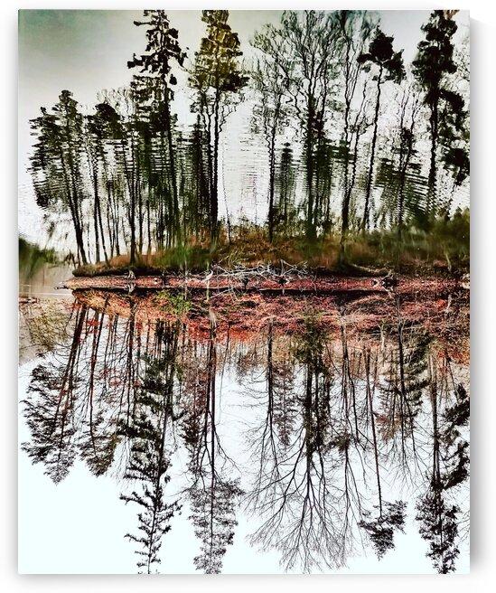 Jelenia Dolina  by Michal Kalbarczyk