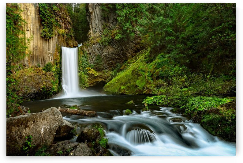Native Flow by Jongas Photo