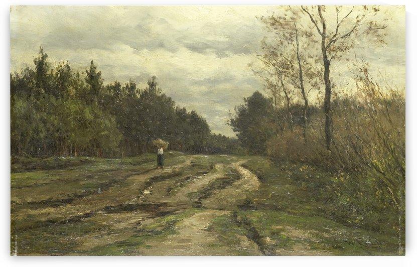 Landweg bij Laren, Noord-Holland by Willem Roelofs