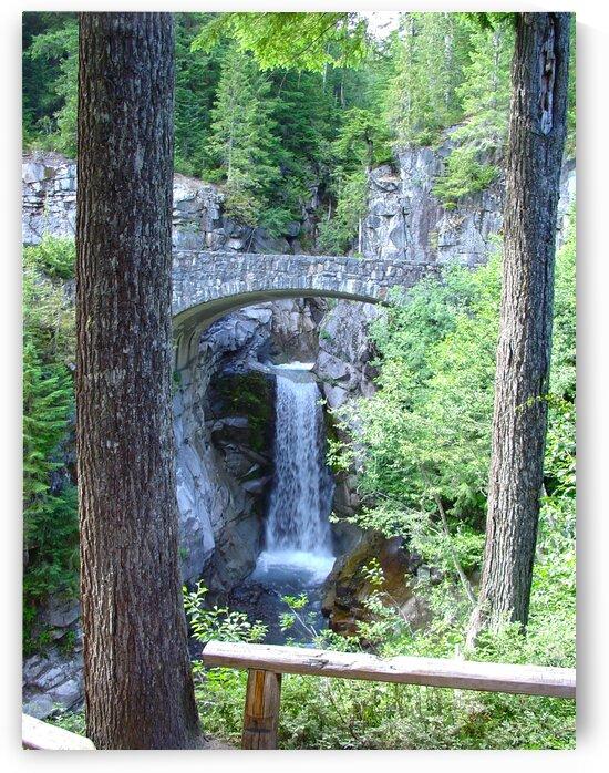Christine Falls at Mount Rainier Pacific Northwest - Waterfall  by 360 Studios