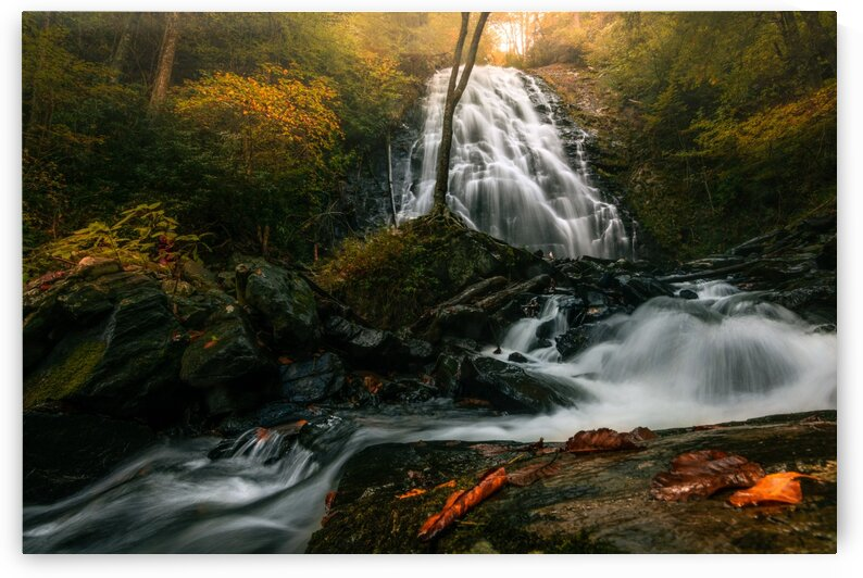 Crabtree Falls Blue Ridge Parkway  III by Mark Daniels