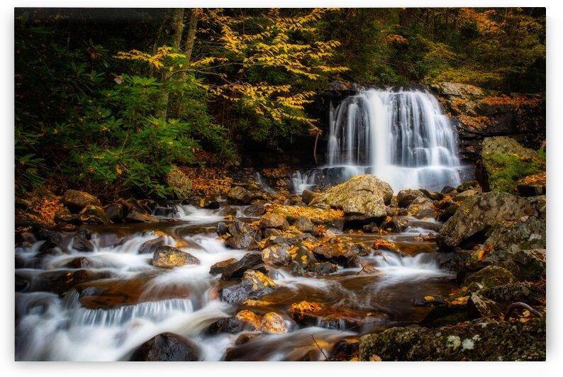 Virginia Creeper Creek by Mark Daniels