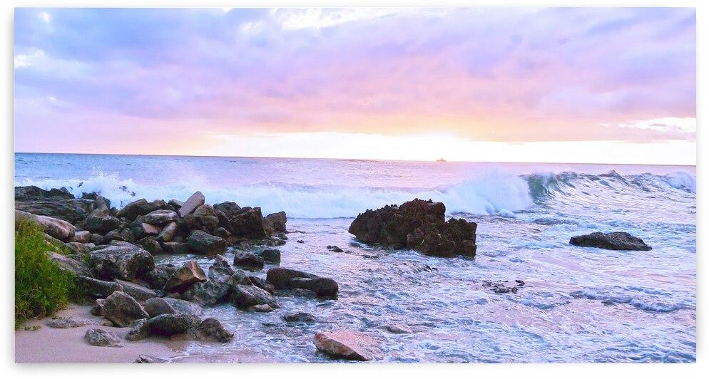 Rocky Coast by 360 Studios