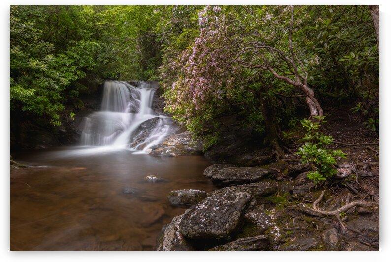 White Oak Falls by Mark Daniels