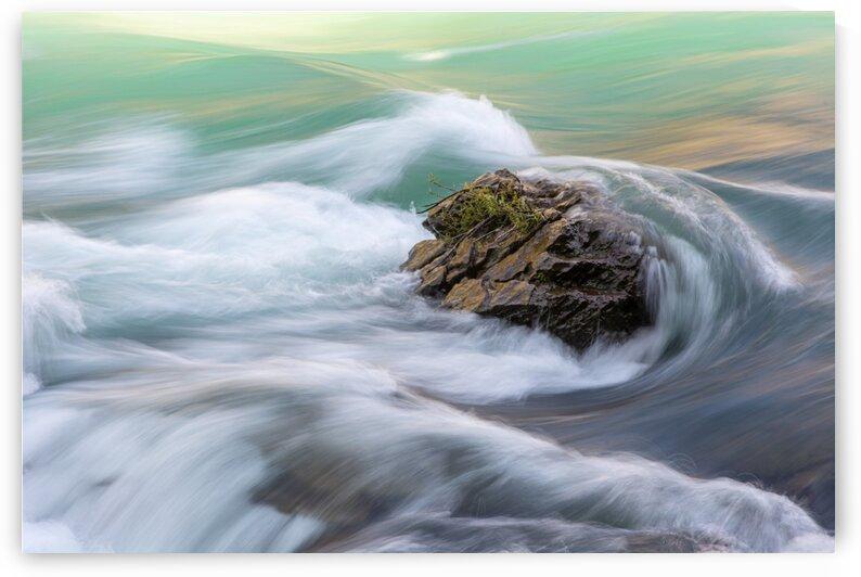 River Rock I by Mark Daniels