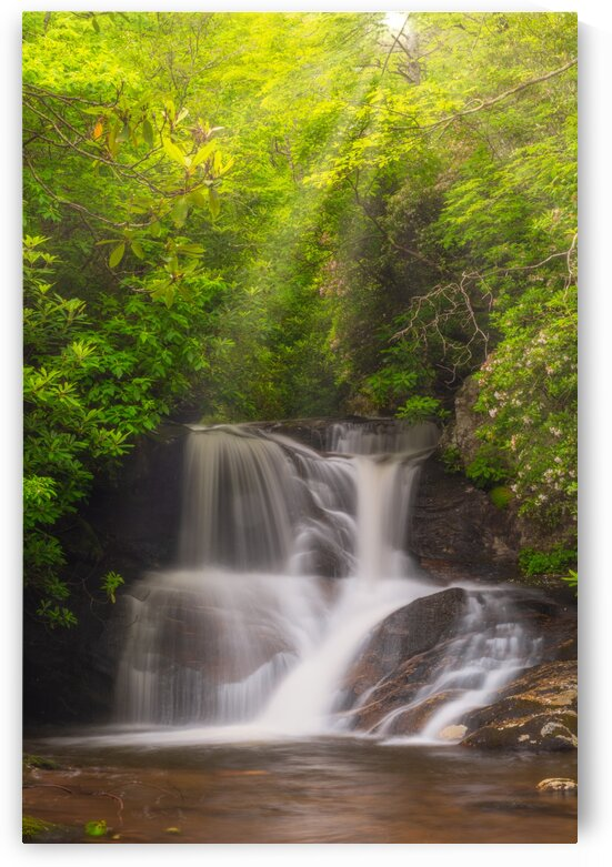 White Oak Falls IV by Mark Daniels