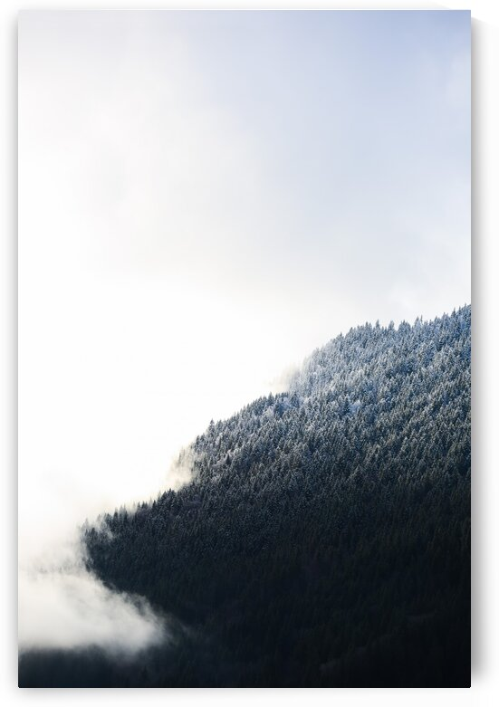Gradients of white by Dom Granger Photography