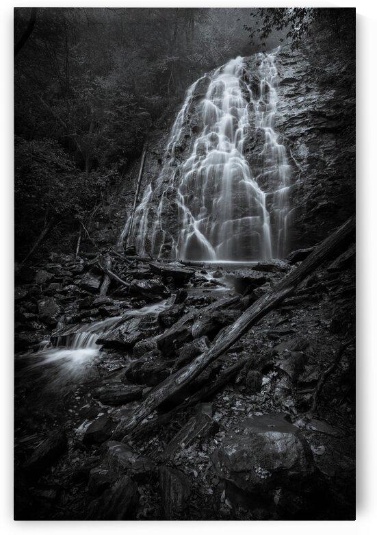 Crabtree Falls BW I by Mark Daniels