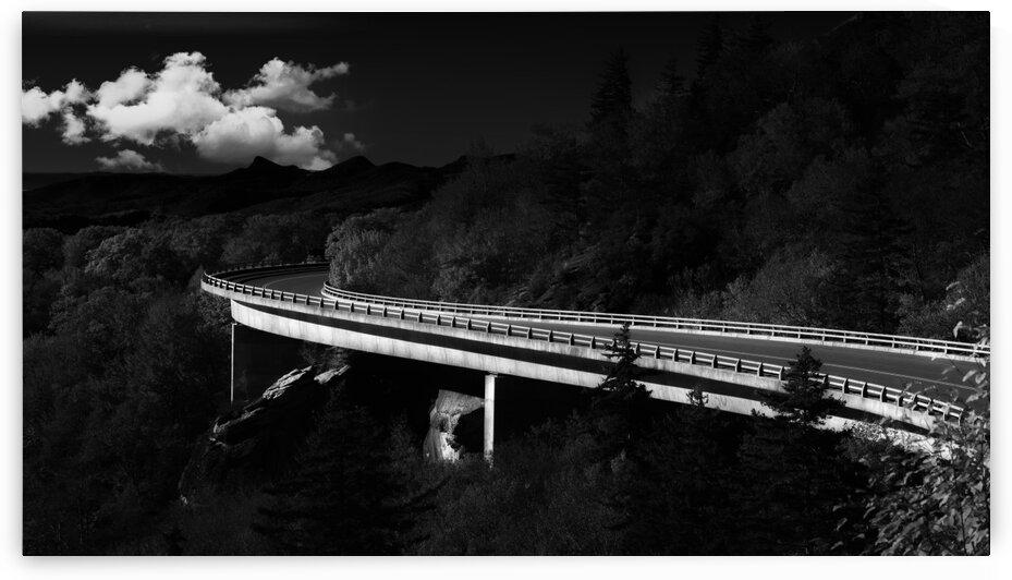 Linn Cove Viaduct  by Mark Daniels