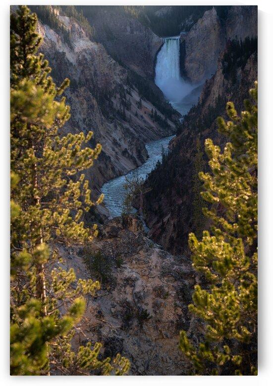 Yellowstone Falls by Noah Lang